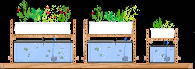Adjustable to fit most aquariums.