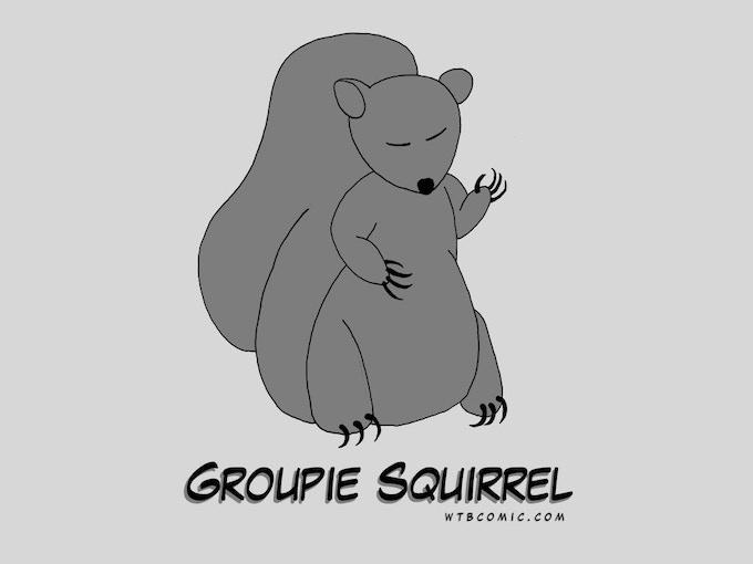 Groupie Squirrel Gray