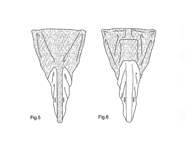FIG. 5 is front view of the protective bicycle cover; and, FIG. 6 is a rear view of the protective bicycle cover.