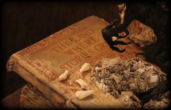 Tooth Fairy Nest in Old Book 2012