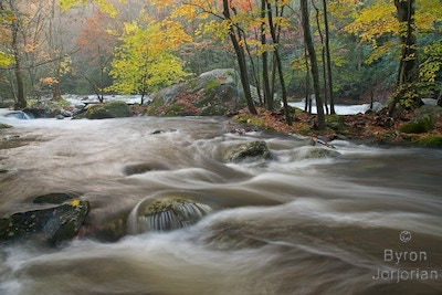 Along The River - Great Smoky Mountains