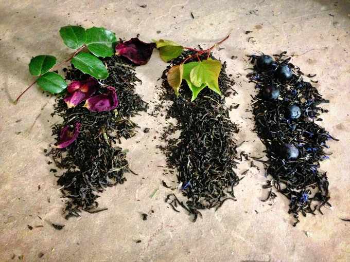 Loose Leaf Tea: Sip & Slip Into the Leaves of a Story by