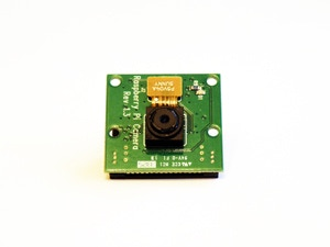 Raspberry Pi Camera:  Just the camera.  Mount it to the GoPiGo and give it eyes.