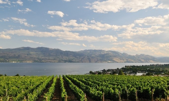 A typical, yet still spectacular Summer day in the Okanagan Valley.