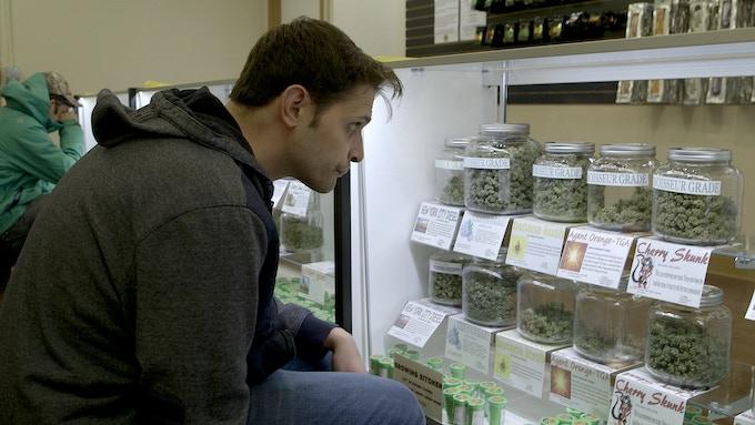 Marijuana Critic, Jake Brown