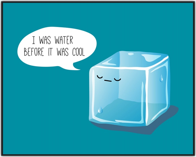 Hipster Ice Cube (Adult & Kids sizes)