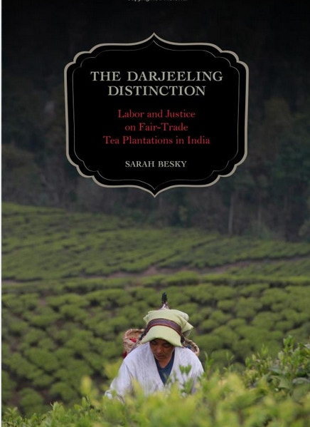 An anthropologist looks at the work of women on Himalayan tea plantations.
