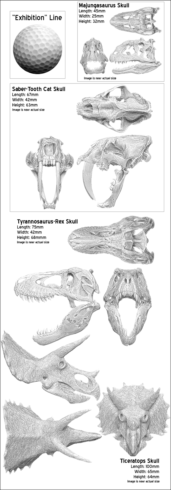 Metal Dinosaur Skull Miniatures by Primordial Profiles — Kickstarter