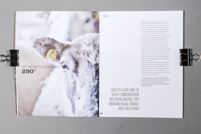 A trilogy of books capturing the world of Sheep Farming by