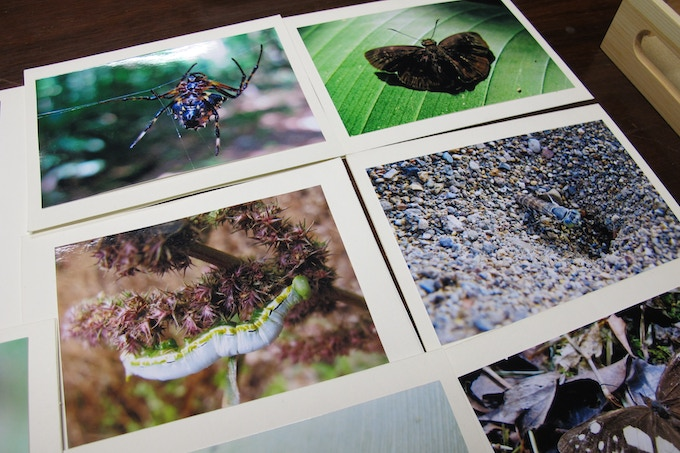Photo Note Cards closer up