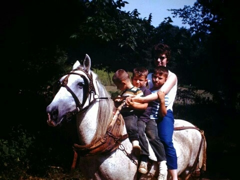 Aunt Janie and her boys (Steve, Jim, and Dan in decreasing size) on a draft horse in Kentucky. Somewhere there is a picture like this on Jim taken about 25 years earlier with Janie, Alfred (her twin), Fred (my dad), and Uncle Earl.