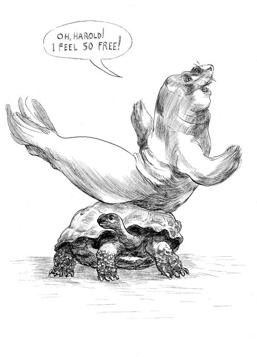 Manatee and Tortoise Print