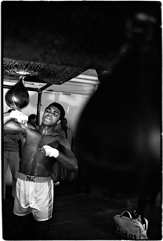 < B > Ali working out with the speed bag
