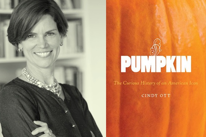 Cindy Ott Ph.D.