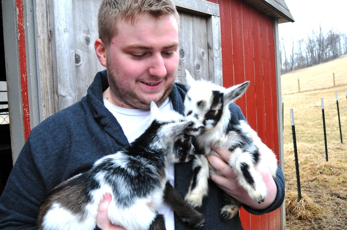 "Our ""Goat Boy,"" Jjay Simms, snuggling week-old Nigerian Dwarf kids while visiting Bigler Knob Goats where we leased a beautiful buck this spring. . Our does are due with kids early this fall - prepare for so much cuteness you'll die!!!!"