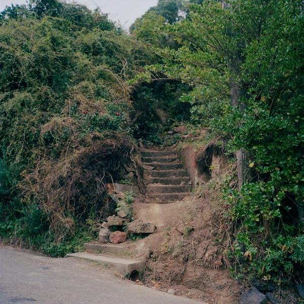 Path in Lyttleton