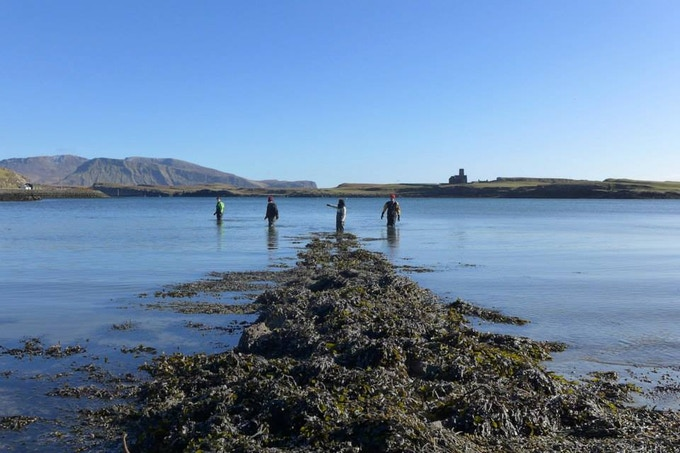 Early staging tests, Canna harbour.