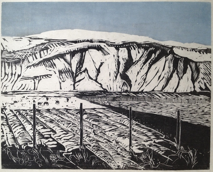 """This 16 x 20 woodcut """"Mountain, horses, field"""" was chosen for exhibit in the """"State of the Art-2014"""" juried show at the State Museum in Harrisburg"""
