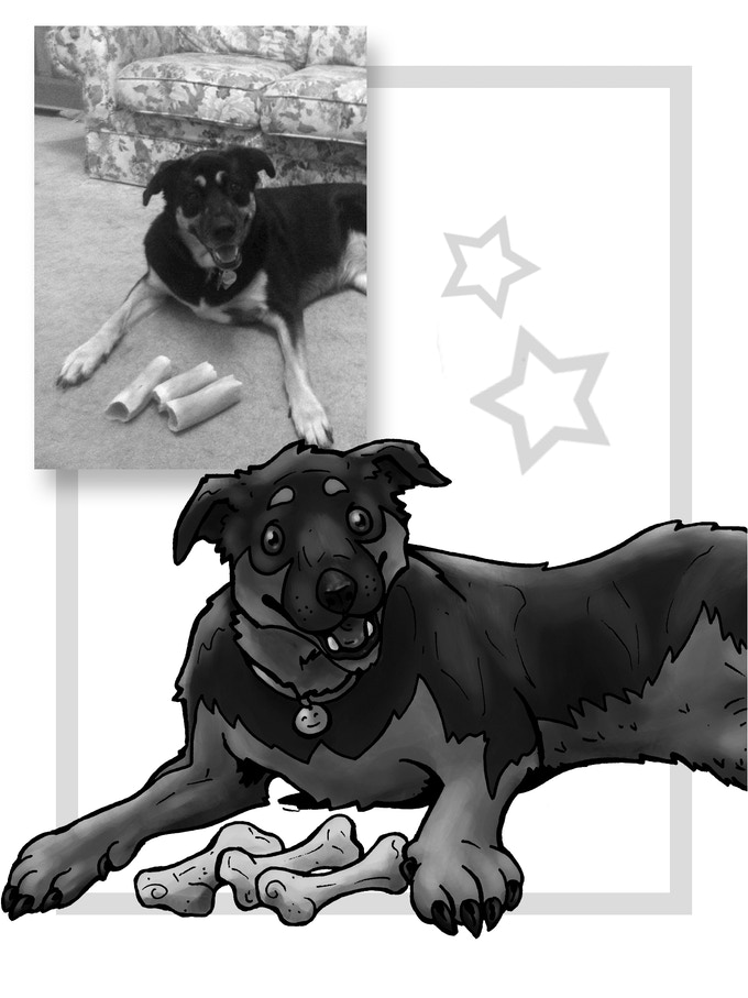 Dommie wants to help, and she has THREE bones to donate!