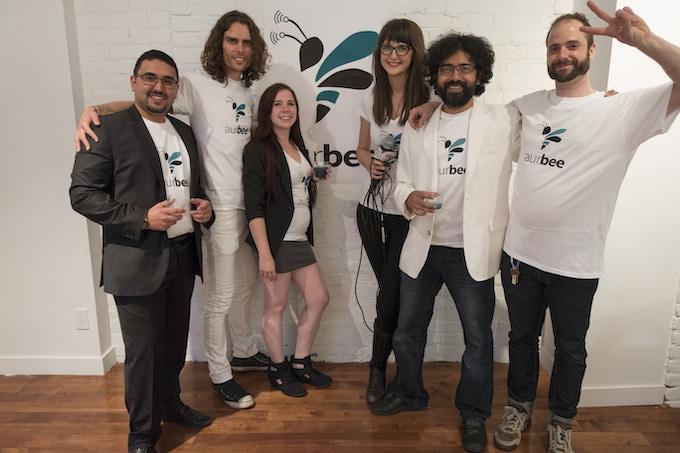 The Aurbee Team