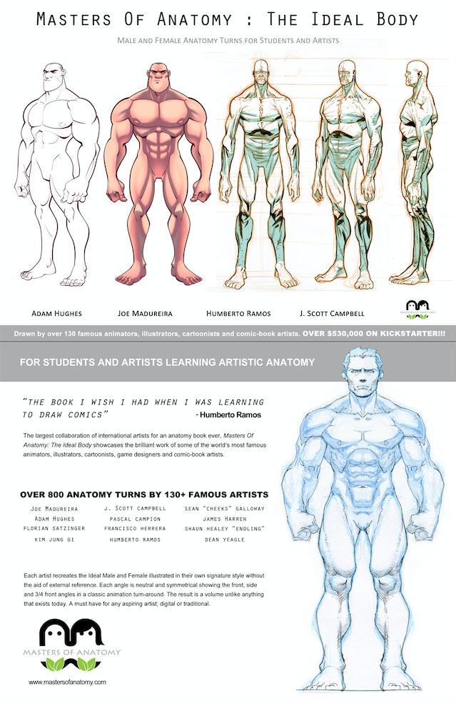 Masters Of Anatomy By Masters Of Anatomy Masters Of Anatomy