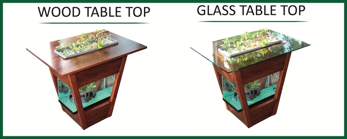 Glass or Wood Top Living Table