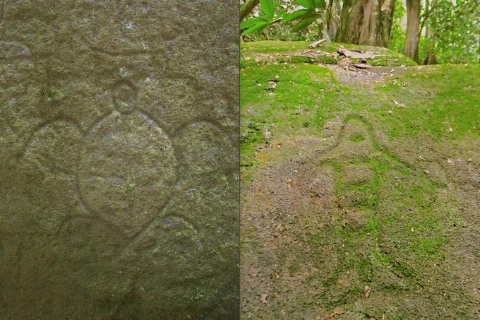 1. Turtle petroglyph at Tohua Kamuihei, Nuku Hiva. 2. Fish design in remote Kahuvai, Nuku Hiva (photos by A. Edwards)