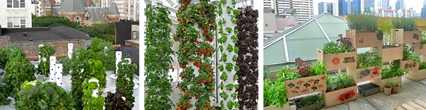 There are many exciting and inspiring rooftop agriculture projects happening across the globe. We will try to use as much recycled materials, such as pallets, barrels and milk crates as possible.