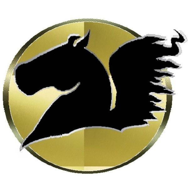Official Pegasus Dominus Logo -Copyright(c)2014