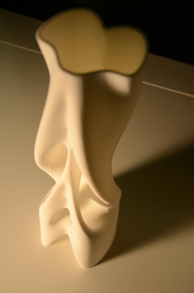 GeMo 3D print in Nylon