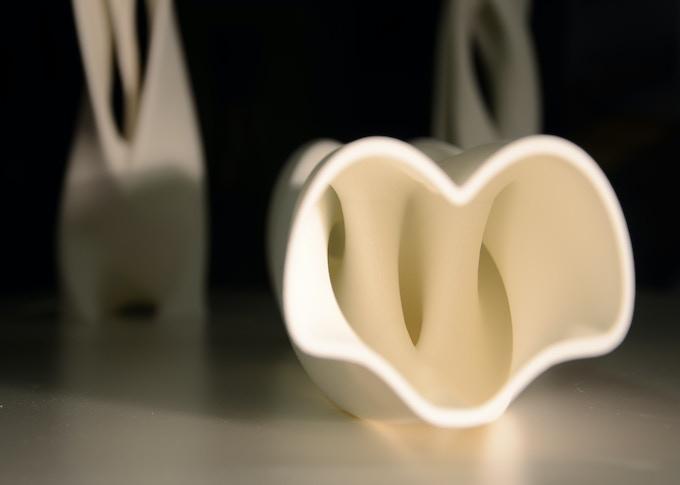 GeMo 3D print in Nylon (inside)
