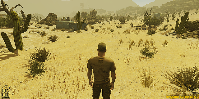 In-game Screenshot [click to see full HD1080i]