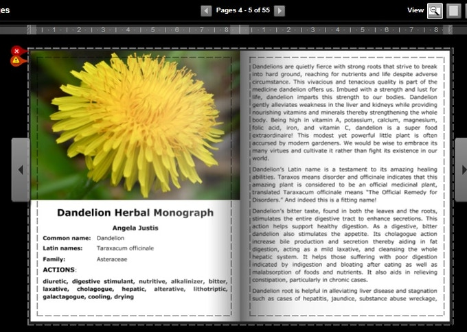 An example of some formatting changes that need to be made in the dandelion issue.