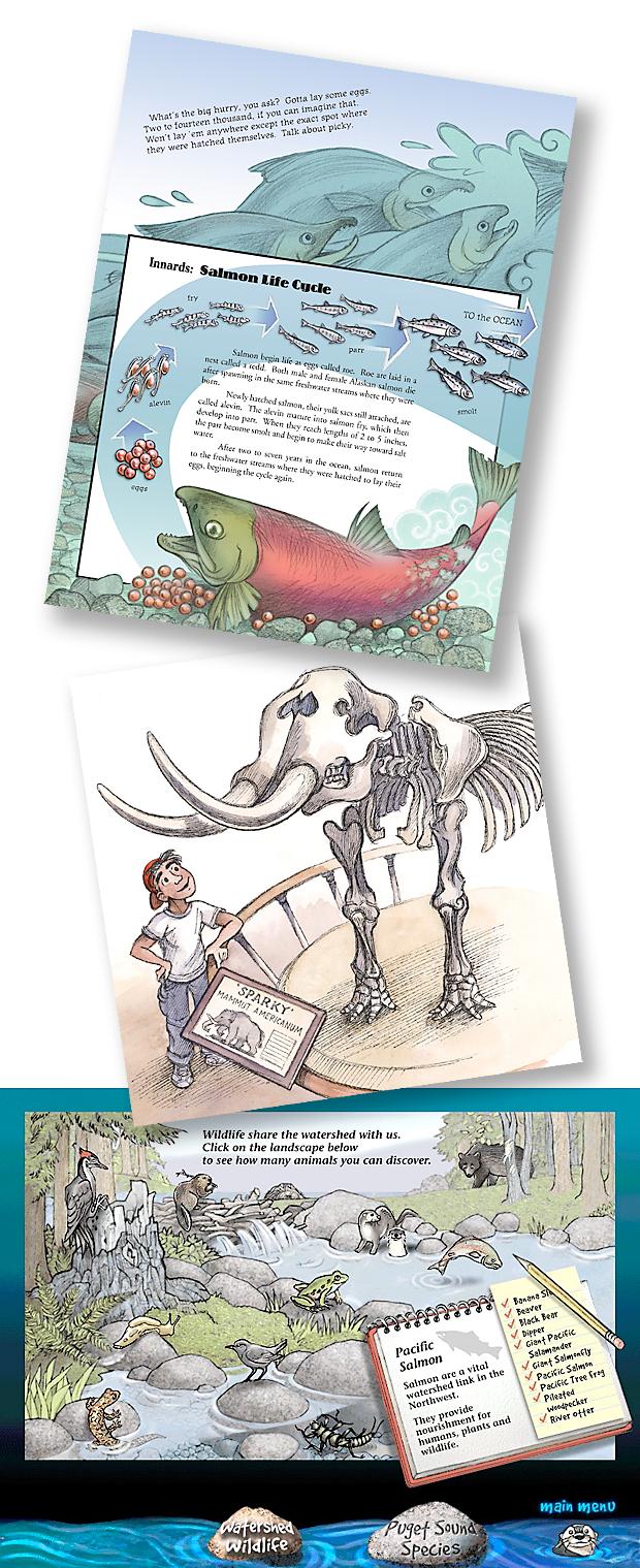 Examples of Karen Lewis' scientific children's book and interactive art