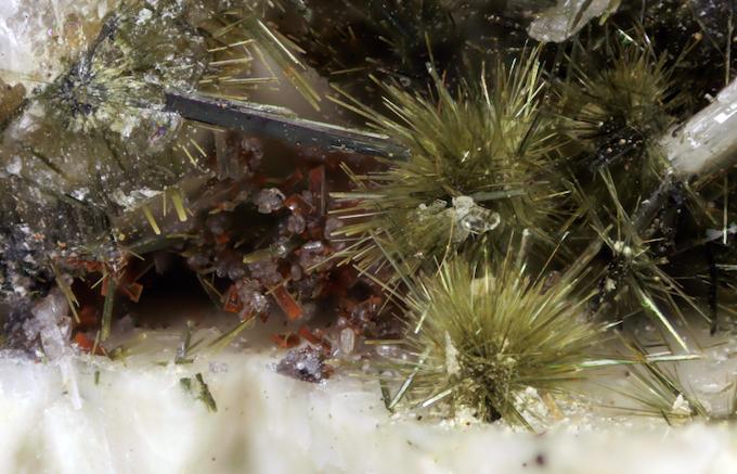 Aegirine (Green sprays) with Aeschynite-(Y) (Reddish crystals), Little Rock, Pulaski Co., Arkansas. What an amazing garden of crystals!