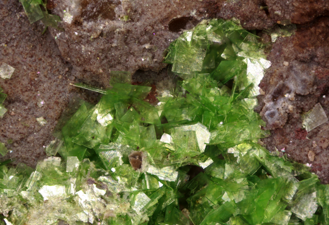 Sincosite (Thin vividly green plates), South Rasmussen Ridge Mine, Caribou Co., Idaho. The material this specimen comes from was pushed back in the hole and buried by the mining company. Very rare!