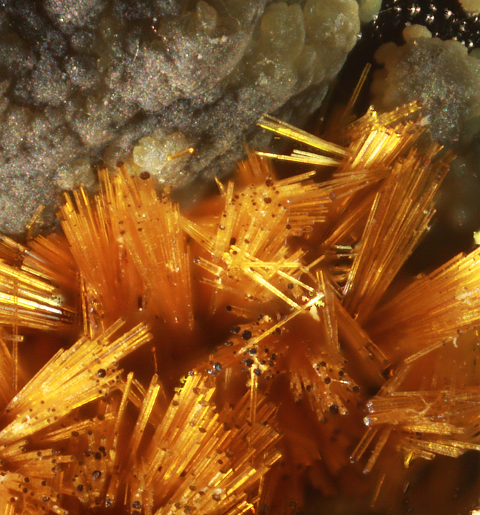 Cacoxenite (Beautiful, brilliant golden sprays), Indian Mountain, Cherokee Co., Alabama. Very often mistaken for gold, this is an iron phosphate mineral.