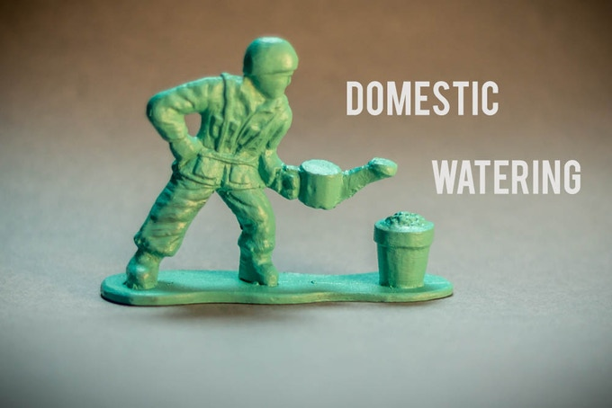Domestic Watering