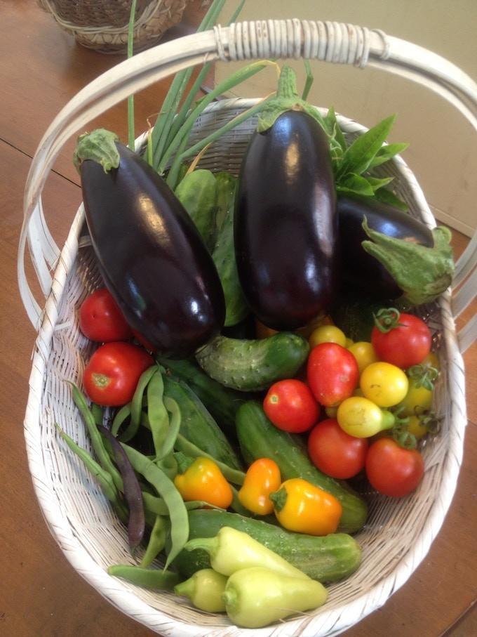 A sampling of a day's summer harvest