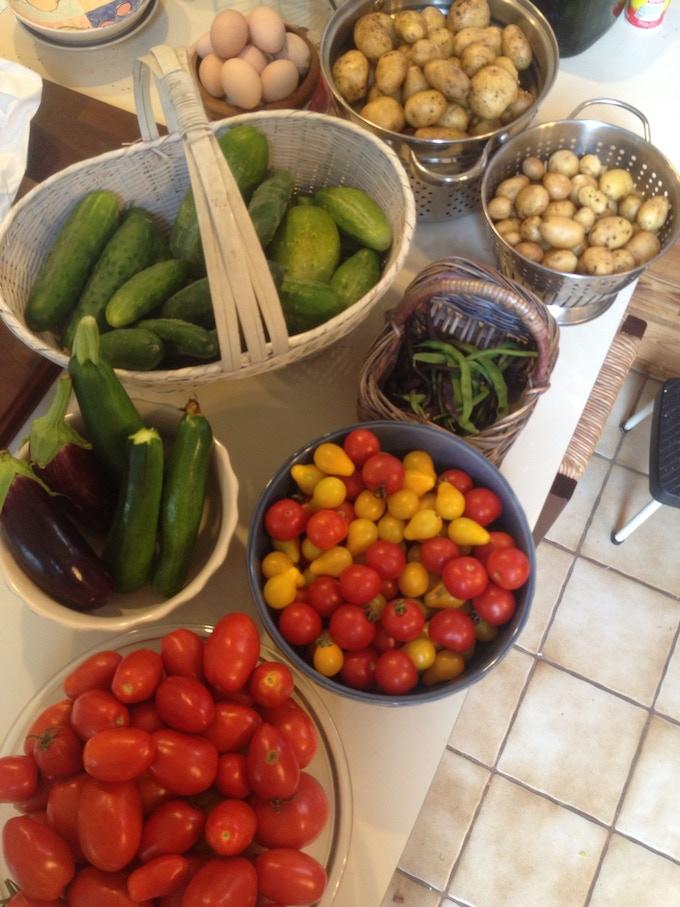 All organically grown heirloom varieties