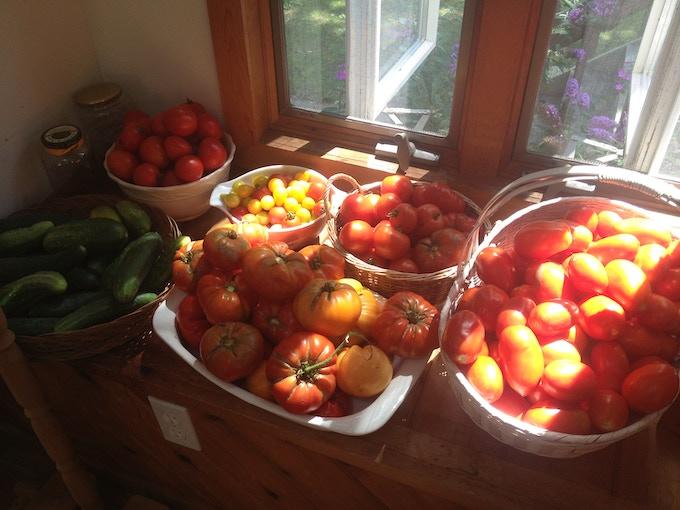 Juicy heirloom tomatoes