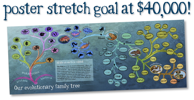 Evolutionary family tree in progress. For a full-size look at the tree click the image above.