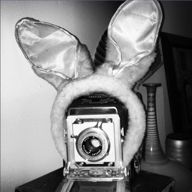 We're modifying this Graflex camera for digital capture (fingers crossed)
