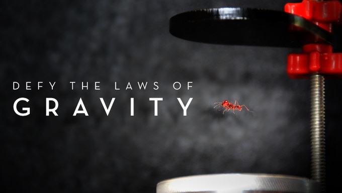 An ant is suspended in the Sonic Levitation Machine's anti-gravity field.