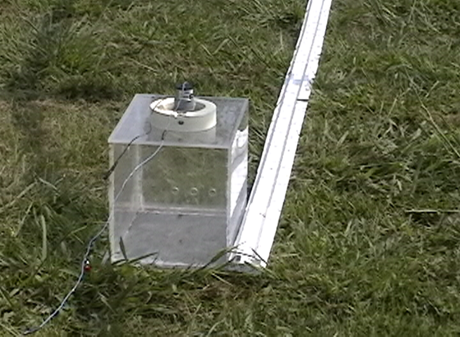 A Trap With an Ant Crusher With a Guide Strip