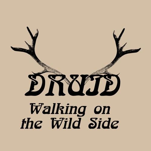 Druid: Walking on the wild side  (Light Sand T-shirt)