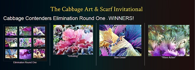 Cabbage Contenders: Elimination Round One Winners