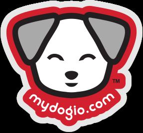 Dappy Doggy Clear Car Sticker