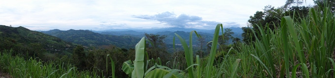 View out over our Andean farm in Colombia.