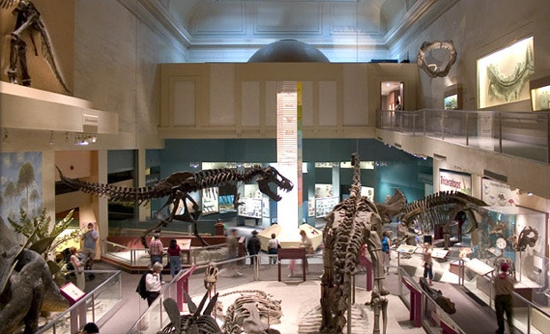 The dinosaur exhibit at the Smithsonian.